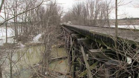 2 Old Rail Bridges and a Cat cover photo