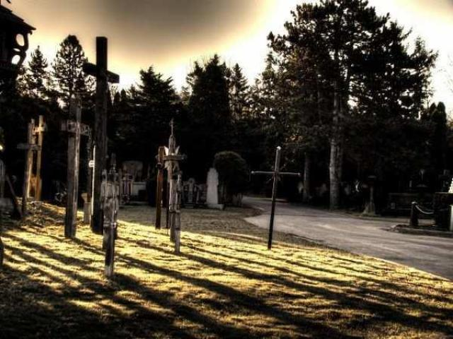 People Are Dyin to get in Here - St.-Johns-Lithuanian-Cemetery5.jpg