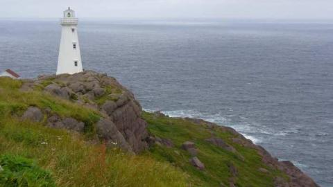 Cape Spear Guns cover photo