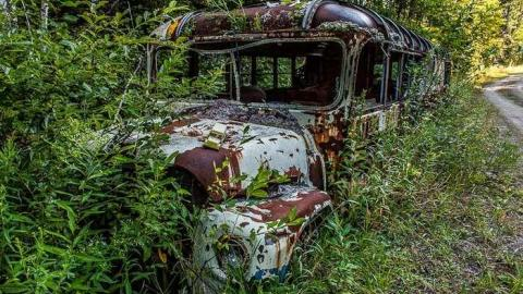 The Bus to Burwash cover photo