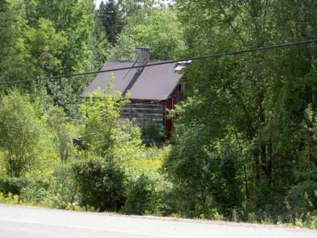 Opeongo Ghost Towns - Opeongo-Road-Ghost-Towns13.jpg