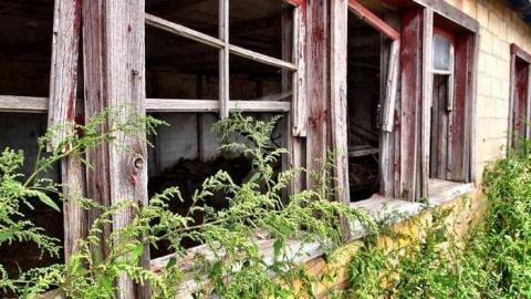 Old Walnut Barn cover photo