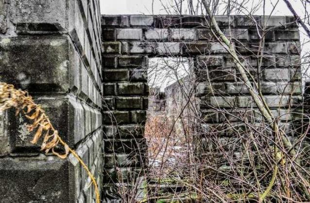 Ruins in Winter - 40-Years-After-the-Fire8.jpg