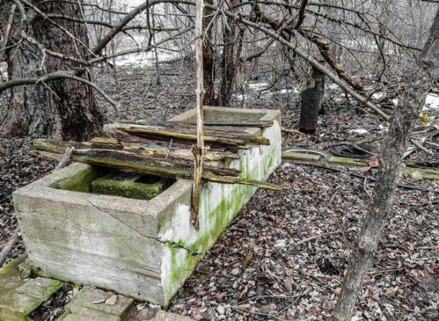 Ruins in Winter - 40-Years-After-the-Fire9.jpg