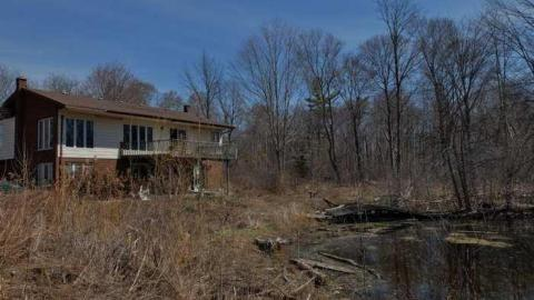 House In The Swamp cover photo