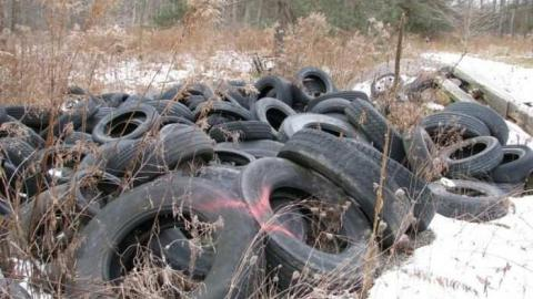 Sideline 28 Tire Dump cover photo