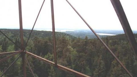 Cheminis Fire Tower cover photo