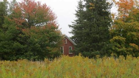 Nature Centre House cover photo