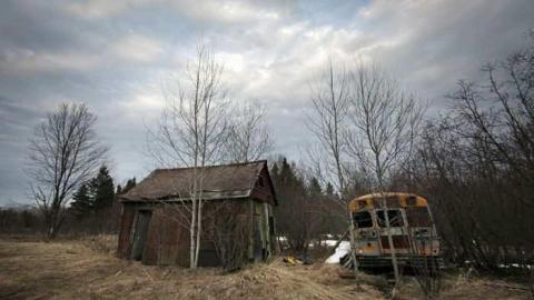 Old School Bus and Shack cover photo