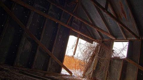 Empty Shed- 401 cover photo