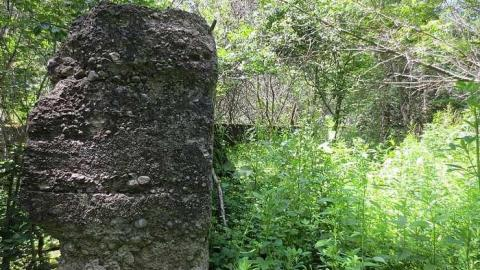Huron Natural Area ruins cover photo