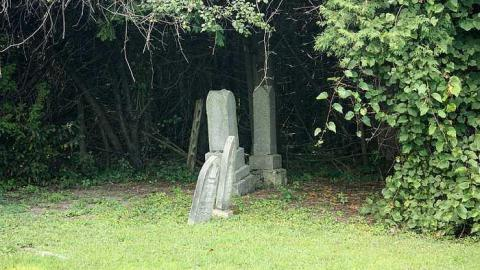 Bell Cemetery cover photo