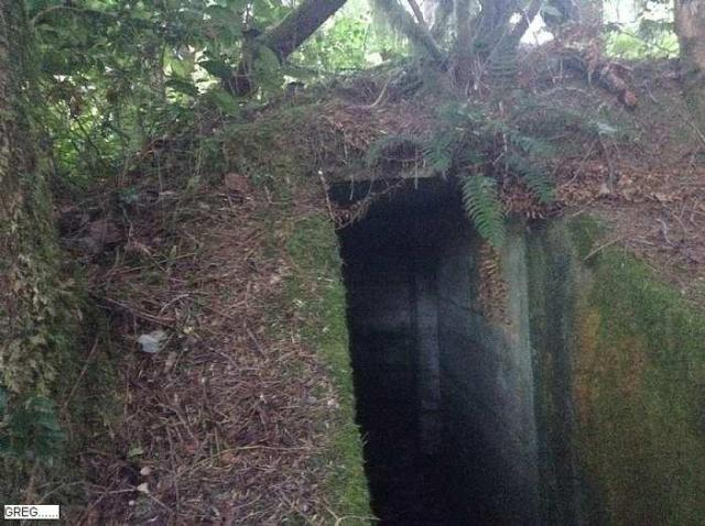 Quick Visit - WWII--Air-Raid-Shelter2.jpg
