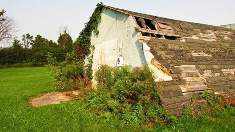 Old Shack? cover photo
