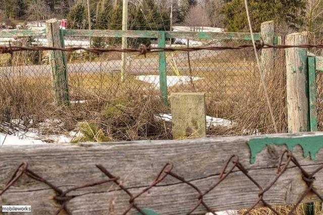 Old Dundee - Beckers-Abandoned-Cemetery11.jpg