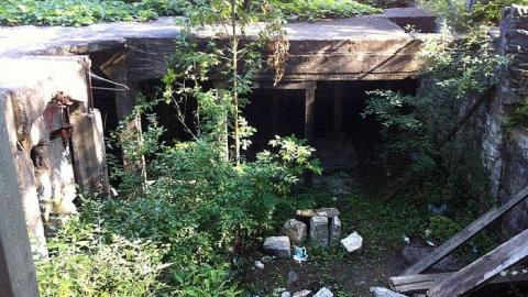Grist Mill cover photo