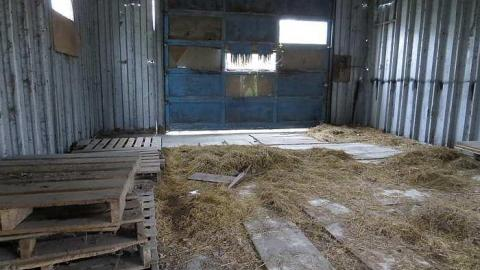 Shed and Stable cover photo