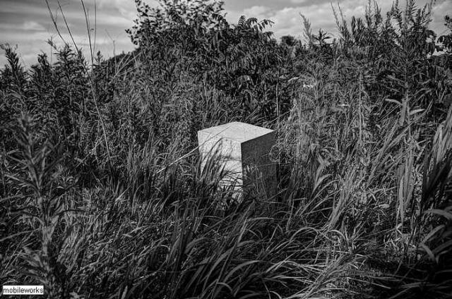 Forest Lawn - Beckers-Abandoned-Cemetery17.jpg
