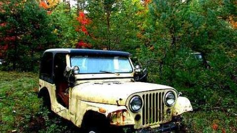 Jeepers cover photo