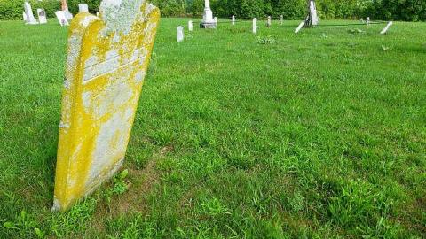 Pinehill Pioneer Cemetery cover photo