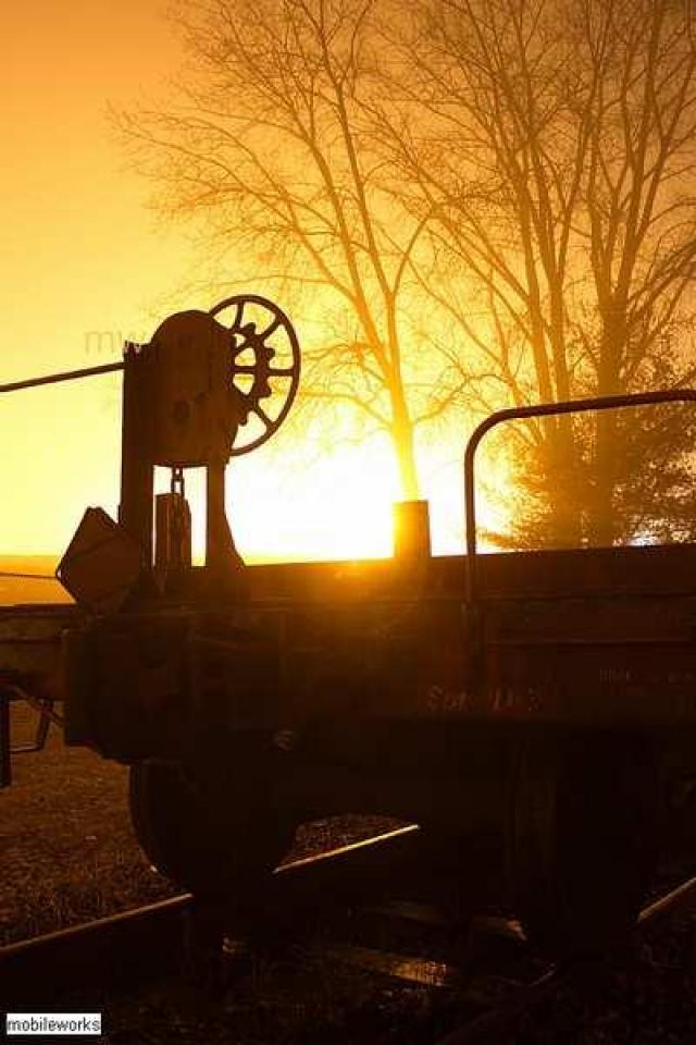 Fog Day Afternoon  - Abandoned-Rolling-Stock9.jpg