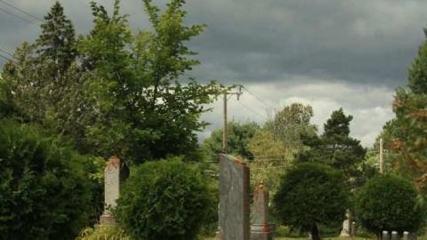 Ingoldsby Pioneer Cemetery cover photo