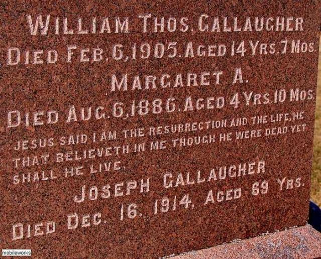 Should Have Had A Life SoBrief - Rosemont-Pioneer-Cemetery2.jpg