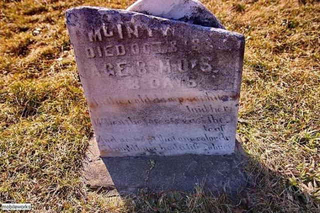 Should Have Had A Life SoBrief - Rosemont-Pioneer-Cemetery20.jpg