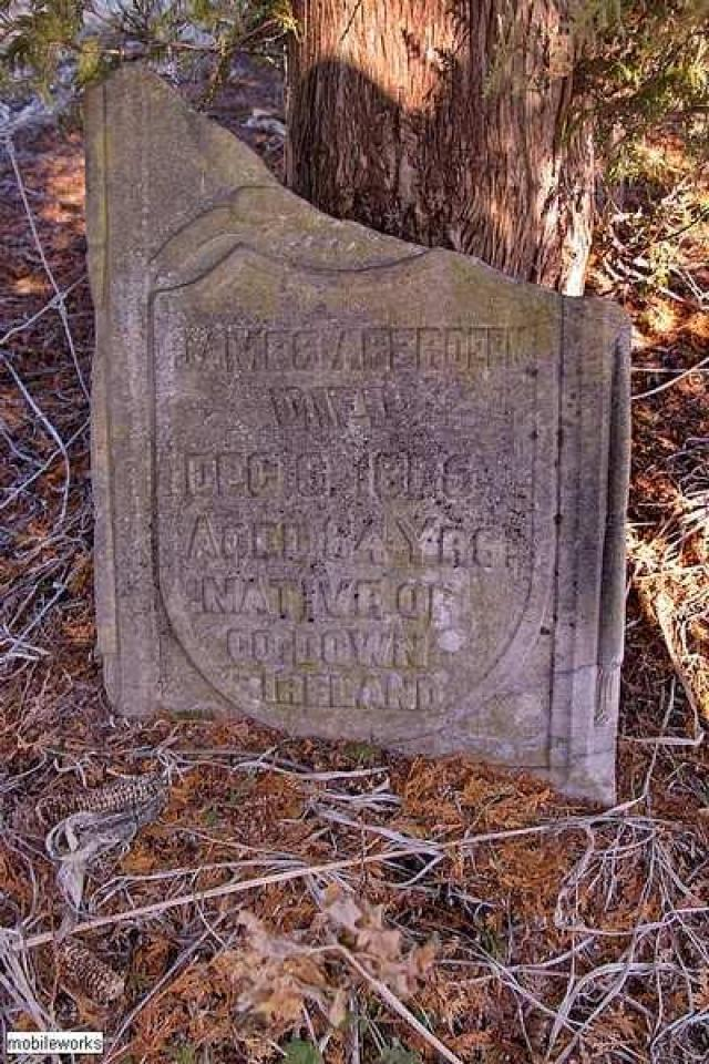 Should Have Had A Life SoBrief - Rosemont-Pioneer-Cemetery24.jpg
