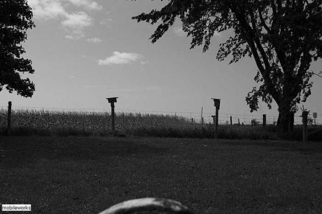 North Brant Pres. Cemetery - Hamlet-Of-Malcolm-(ghost-town)18.jpg
