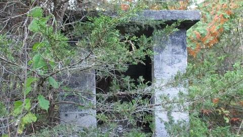 The Portland Cement Ruins cover photo