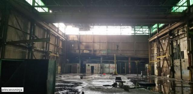After The Fire  - S-and-L-Plant81.jpg