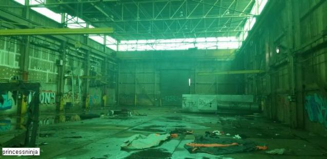 After The Fire  - S-and-L-Plant37.jpg