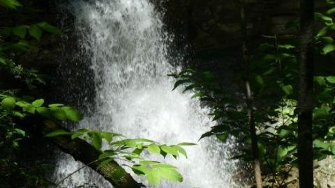 Webwood Falls cover photo