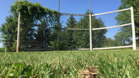 Jake Lubber's Field cover photo