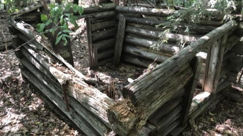 Oxtongue Forest Ranger Cabin cover photo