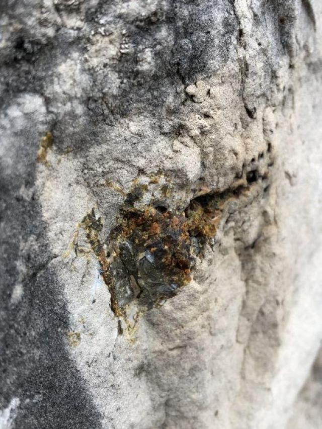 Stone Road Fossils/Crystals - Stone-Rd-Prison-Quarry26.jpeg
