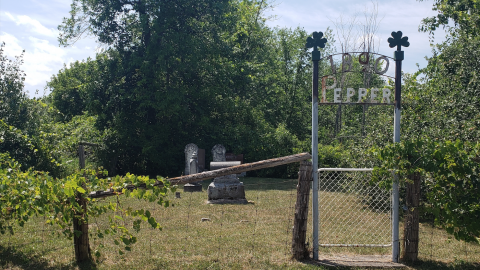 Pepper Cemetery - July 26 2020 cover photo