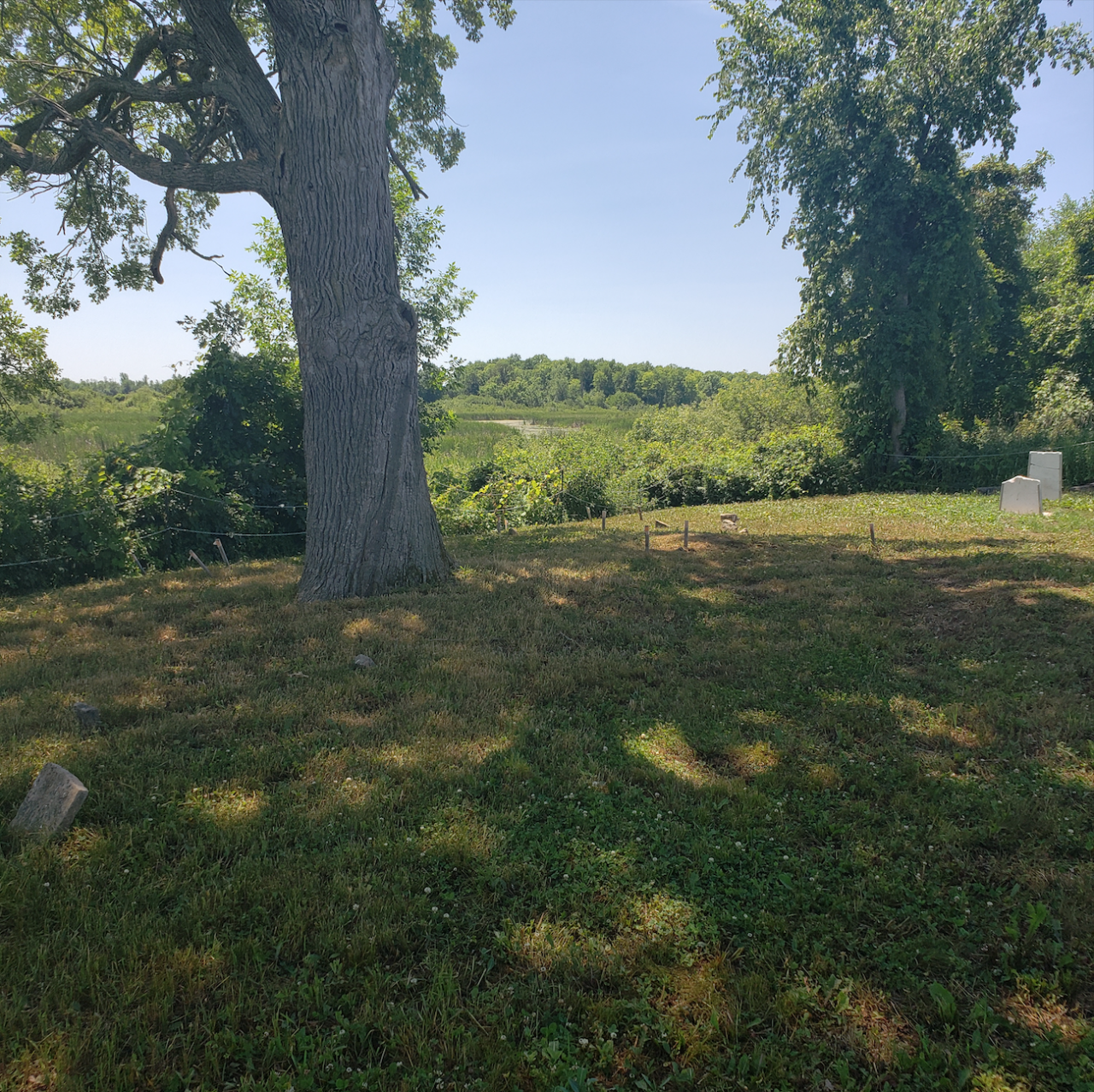 Smith/Cross Cemetery - July 4 2020 - 9.png