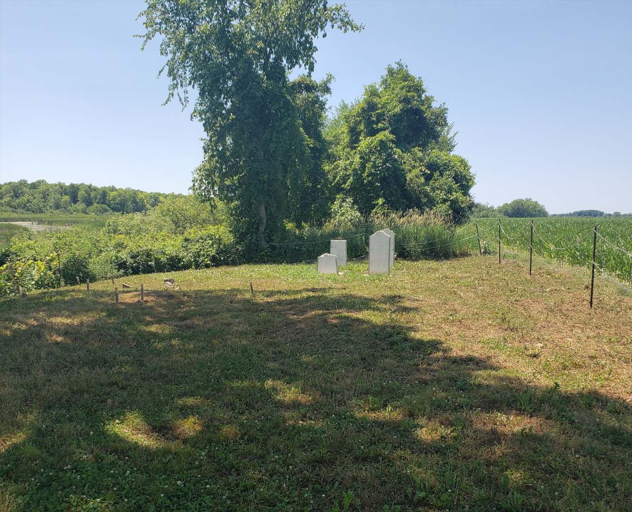 Smith/Cross Cemetery - July 4 2020 - 10.png