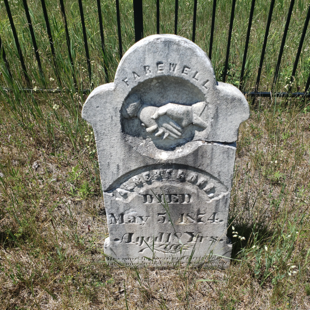 Burk's Cemetery - July 4 2020 - 3.png