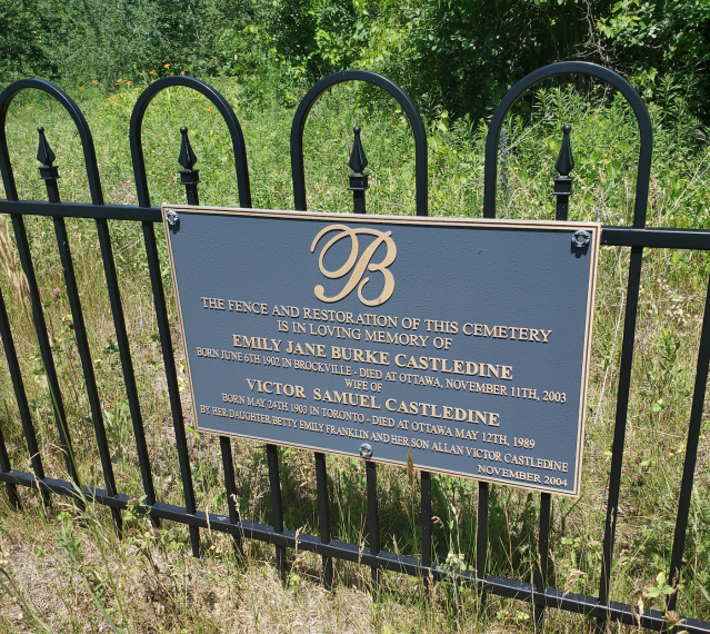Burk's Cemetery - July 4 2020 - 6.png