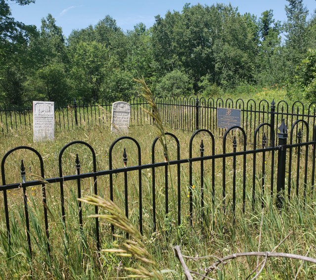 Burk's Cemetery - July 4 2020 - 10.png