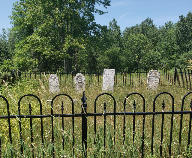 Burk's Cemetery - July 4 2020 - 11.png