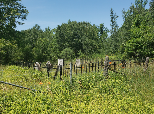 Burk's Cemetery - July 4 2020 - 13.png