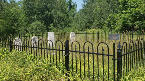 Burk's Cemetery - July 4 2020 cover photo