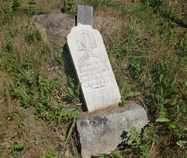 Edmunds/Willoughby Cemetery - July 4 2020 - 5.png