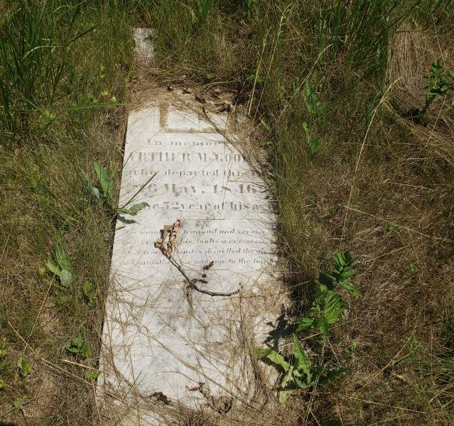 Edmunds/Willoughby Cemetery - July 4 2020 - 6.png