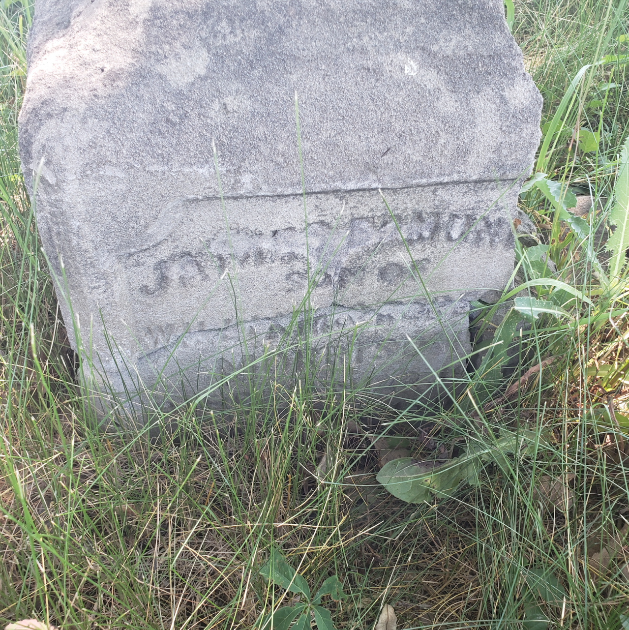 Edmunds/Willoughby Cemetery - July 4 2020 - 7.png