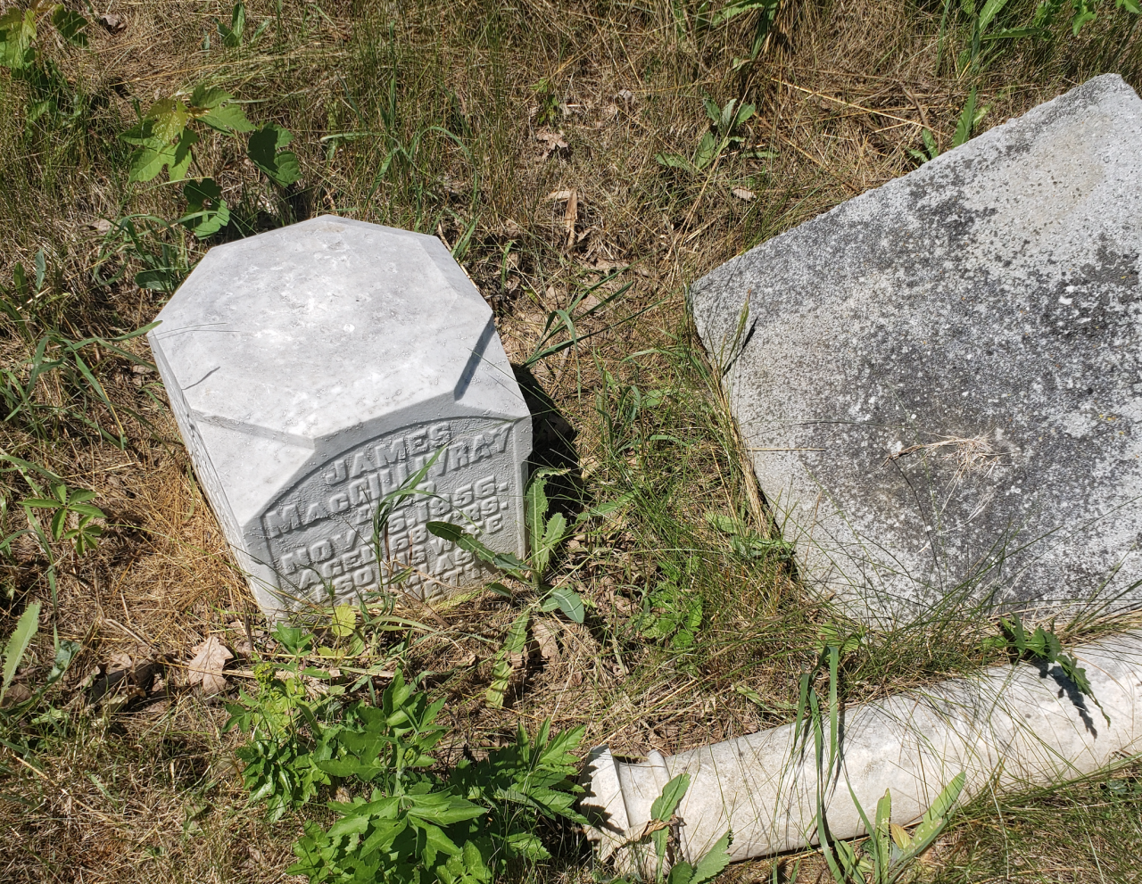 Edmunds/Willoughby Cemetery - July 4 2020 - 12.png